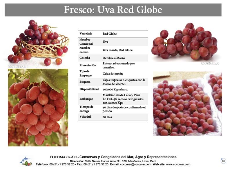 Cocomar (Peru) – Uva Red Globe