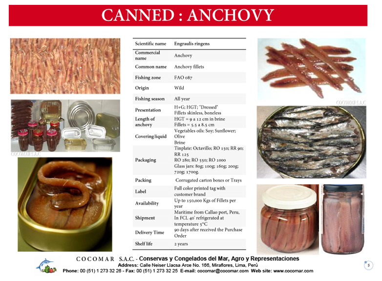 6.- Cocomar (Peru) – Canned – Anchovies salted